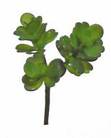 Succulents 9 Jade Plant Greenery Silk Wedding Flowers Centerpieces Decor