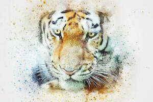 Tiger-Abstract-Watercolour-Art-Giant-Poster-A5-A4-A3-A2-A1-A0-Sizes