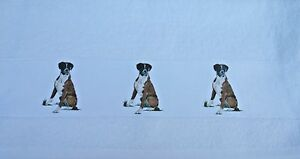 BOXER-DOG-LARGE-HAND-GUEST-TOWEL-COTTON-SANDRA-COEN-ARTIST-WATERCOLOUR-PRINT