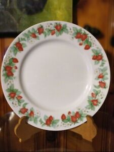 CHRISTOPHER-STUART-BERRY-ORCHARD-DINNER-PLATES-SET-OF-4-RARE-DISCONTINUED
