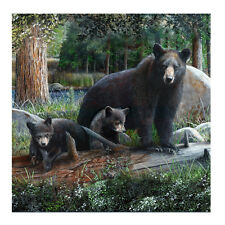 "Black Bear&Cubs 70"" Fabric Bath Shower Curtain Rustic Bathroom Home/Cabin Decor"