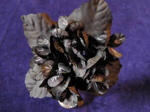 Millinery-Flower-1-3-4-034-Violets-all-Black-Lot-of-20-Bridal-Wedding-Hair-Y100