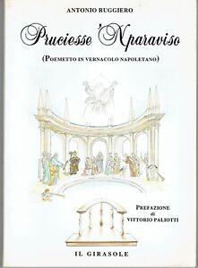 poemetto-in-napoletano-A-Ruggiero-PRUCIESSE-039-NPARAVISO-ed-il-girasole