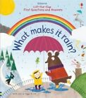 Lift-the-Flap First Questions and Answers What Makes it Rain? by Katie Daynes (Board book, 2015)