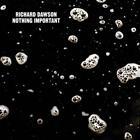 Nothing Important (LP+MP3) von Richard Dawson (2014)