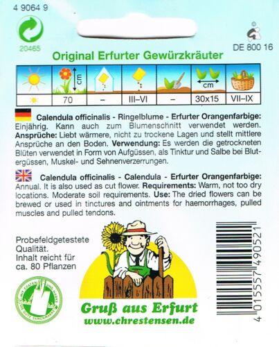 490649 Ringelblume`Èrfurter Orangefarbige`einjährig Calendula offcinalis Saatgut
