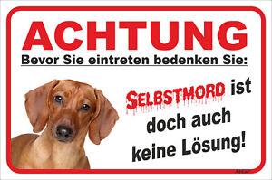 Selbstmord 15x20-40x60cm Teckel Hund Dachshund Aufstrebend Dackel Rot Schild Vorsicht