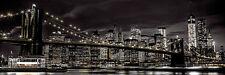"""""""Tür"""" Poster NEW YORK - By Assaf Frank Quer ca158x53cm NEU TP481"""