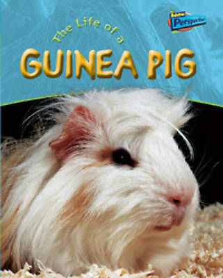 Raintree Perspectives: Life Cycles - the Life of a Guinea Pig (Raintree Perspec