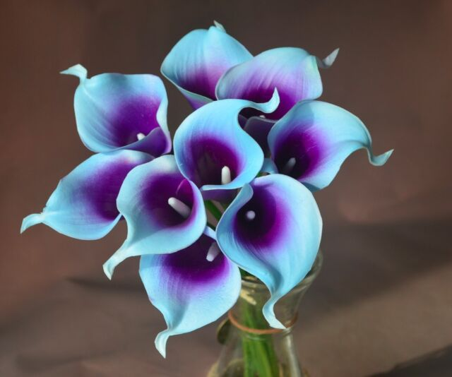 blue purple picasso calla lily 36stems for real touch bridal wedding bouquets