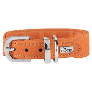 Hunter-Collar-de-Perros-Cannes-Mini-Naranja-Varios-Tamanos-Nuevo