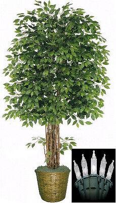 "Artificial 8' Ficus Tree Plant Basket Arrangement Topiary & Christmas Lights 96"""