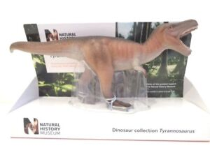 NATURAL HISTORY MUSEUM TYRANNOSAURUS REX DINOSAUR TOY MODEL by TOYWAY - NEW