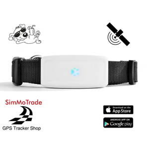 simmotrade tk 911 gps tracker mit sim karte f r hunde. Black Bedroom Furniture Sets. Home Design Ideas