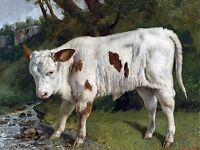 White Veal Farm G. Courbet Tile Mural Kitchen Wall Backsplash Art Marble Ceramic