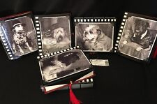 Katherine's Collection Lot Of 6 Retired Celebrity Dog Book Boxes Gift Box