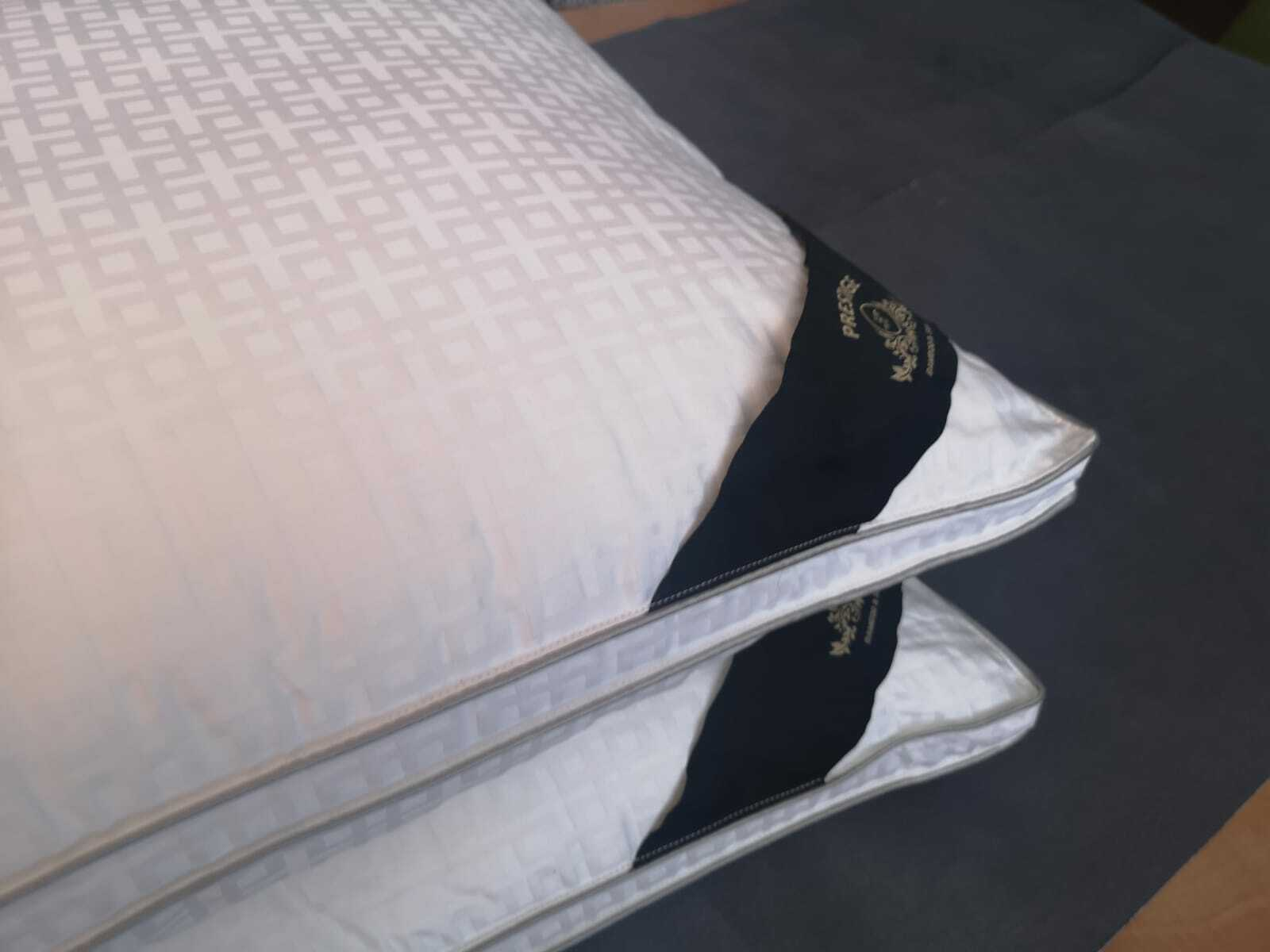 PAIR OF BAMBOO COTTON 600 T C C C FEELS LIKE 100% DOWN PILLOW SILK FILLED PILLOWS ff780f