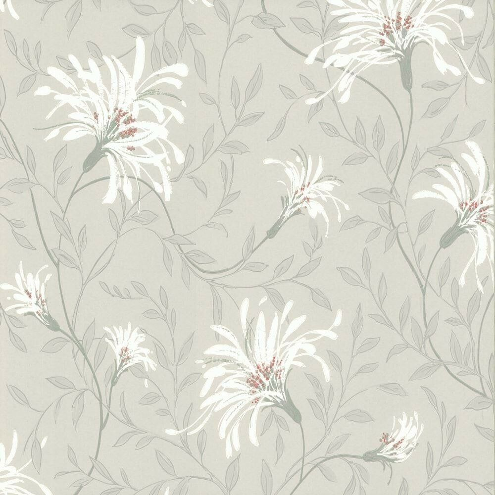 1601-101-05 - pinkmore Daisy Floral Trails Grey White Coral 1838 Wallpaper