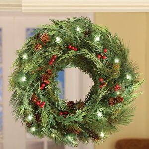 Led Double Sided White Evergreen Christmas Wreath