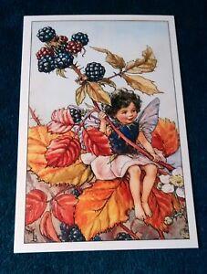CICELY-MARY-BARKER-FLOWER-FAIRIES-POSTCARD-THE-BLACKBERRY-FAIRY-OF-THE-AUTUMN