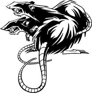 Tribal-Rats-rat-car-van-camper-4x4-sticker-decal-16v