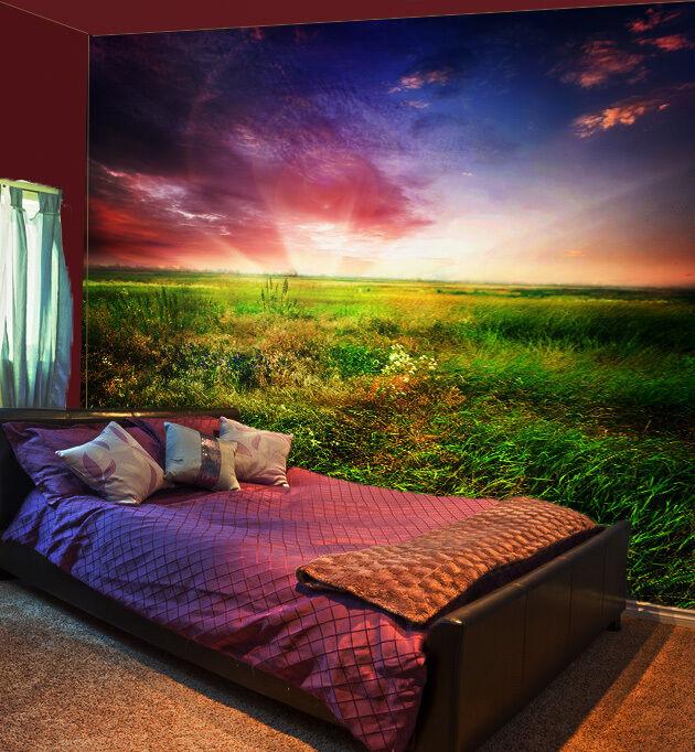 3D Bello Campo 1 Parete Murale Foto Carta da parati immagine sfondo muro stampa
