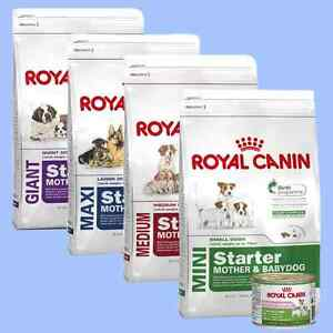 royal canin starter mother baby dog puppy dry wet mousse mini medium maxi giant ebay. Black Bedroom Furniture Sets. Home Design Ideas