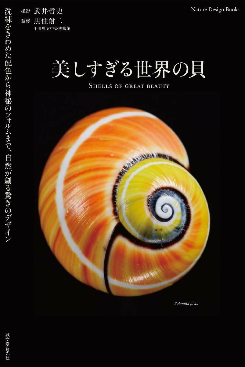 SHELLS OF GREAT BEAUTY Design of Surprise to Create Natural Book