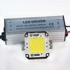 30W White High Power LED Light Lamp Panel w 30W High Power LED Driver AC85-265V