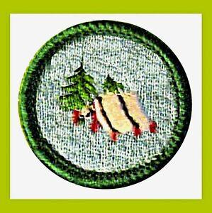 Details about TROOP CAMPER 1970 NEW Junior Girl Scout Badge, Patch  Adventurer VOLUME DISCOUNT