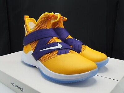 finest selection c0e10 a86f3 Nike Lebron Soldier XII 12 ID