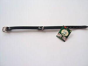 Lederhalsband-Hundehalsband-gruen-47cm-von-Karlie