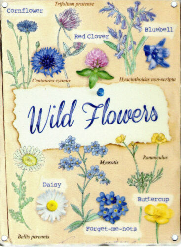 House//Kitchen Countryside Medium Metal Tin Sign Picture Wild Flowers Collection