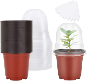 """30 Plant Nursery Pots with Humidity Dome, 4"""" Soft Transparent Plastic Gardening"""
