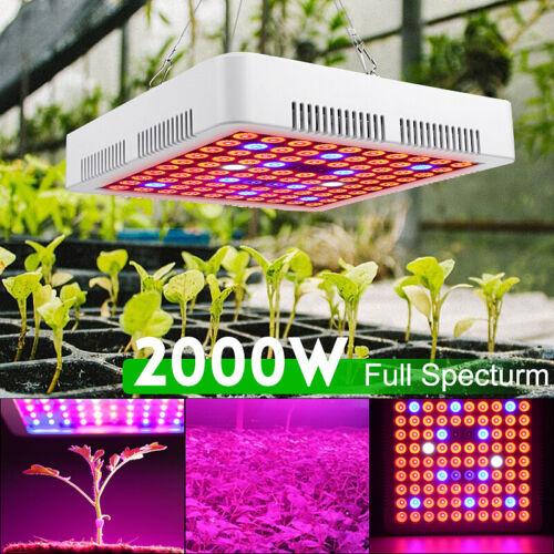 2000W LED Grow Light Hydroponic Full Spectrum Indoor Veg Flower Plant Lamp Panel