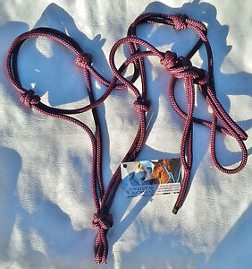 Blue 4 Noseband Knot 6mm Rope Halter  CHOICE OF SIZE by Natural Equipment