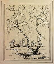 Original Kohlezeichnung Lange Naturansicht Birken Bäume Kunst Handzeichnung xz