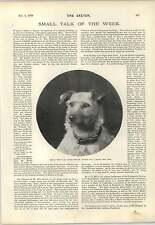 1898 Mr Edwin Lemare Organist Veteran Boer