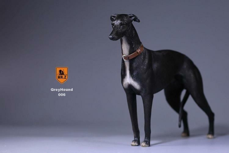Mr.Z 1 6 Scale Scale Scale Pet Model No.14 Greyhound Animal Dog Model Toy For 12'' Figure cdc47f