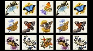 Fabric-Butterflies-Moths-on-Cream-Cotton-by-Elizabeth-23-034-x42-034-Panel
