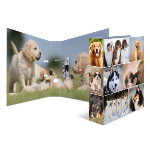 "/""Hunde/"" Herma Motivordner DIN A4 70mm breit"