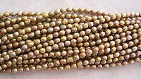 16 Strand Golden Mustard Light Brown Freshwater Pearl Rice Beads 6mm-7mm