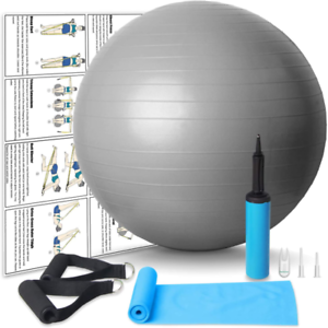 Nononfish Resistance Bands With Handles And 65Cm Exercise Ball Anti Burst With A