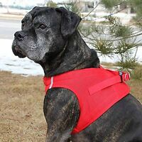 Choke Free Reflective Step In Ultra Harness Xl Red American River