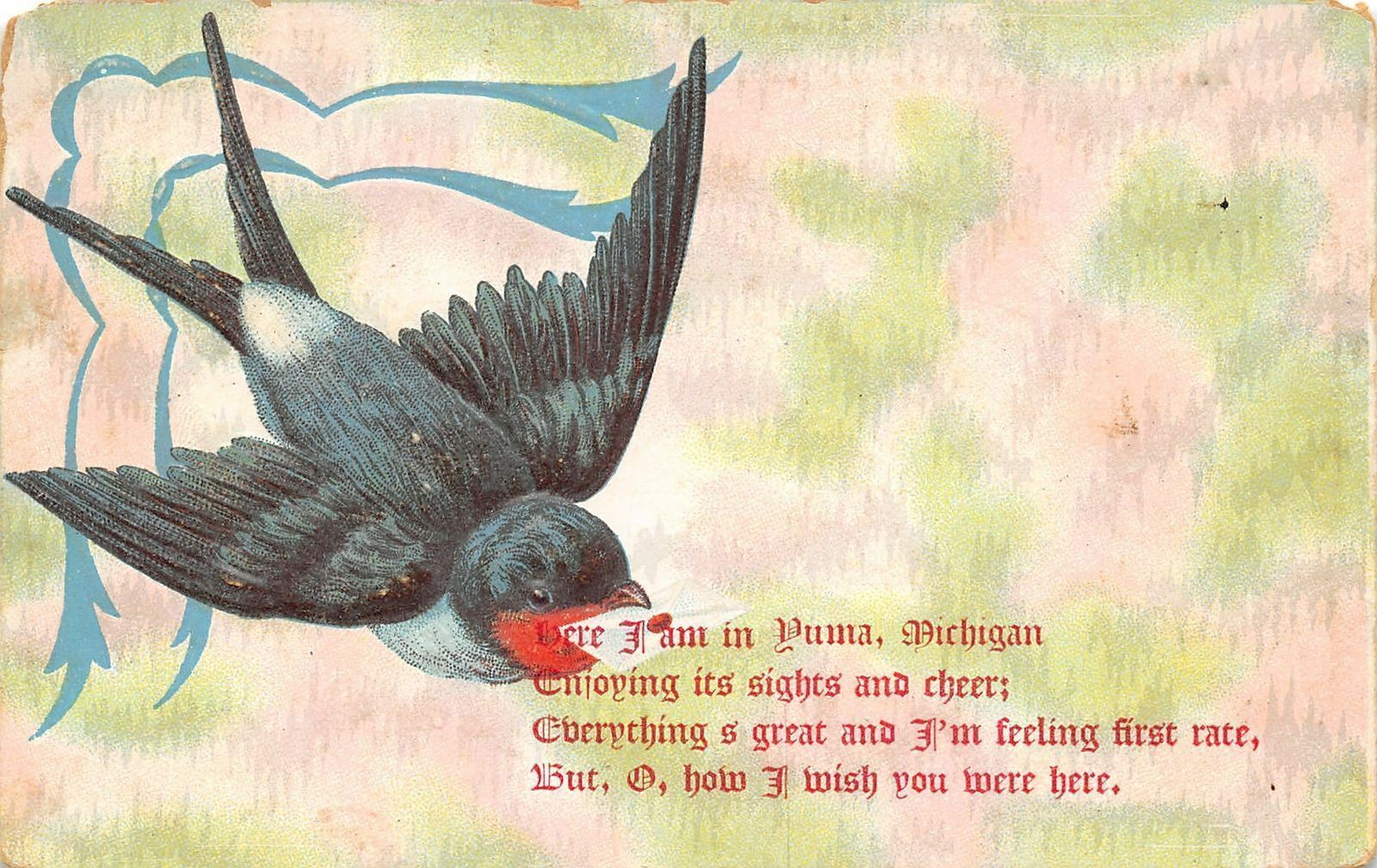 Yuma Mesick MI Barn Swallow Delivers Poem of Cheer~How I Wish You Were Here 1913