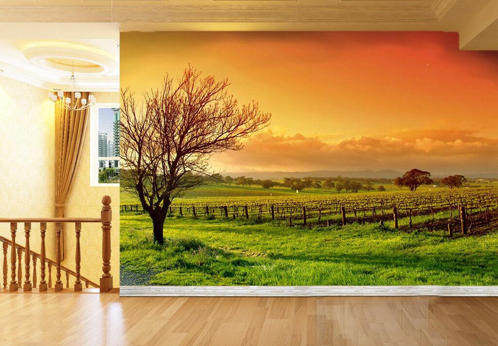 3D Crépuscule.Herbe Photo Art Papier Peint en Autocollant Murale Plafond Chambre Art Photo 26d3ea