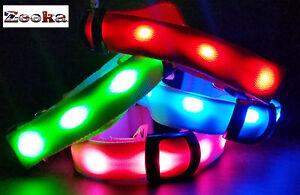 Brillante-LED-parpadea-la-luz-de-seguridad-reflector-Collar-De-Perro-Spot-034-el-Reino-Unido