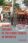 Visual Cultures of the Ethnic Chinese in Indonesia by Abidin Kusno (Hardback, 2016)
