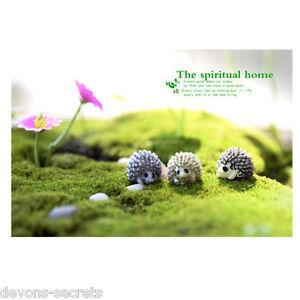 2 Miniature Modèle Bonsai Bol Fairy Garden Gâteau Ornements Nouveaux Animaux Hérissons-afficher Le Titre D'origine Convient Aux Hommes Et Aux Femmes De Tous âGes En Toutes Saisons