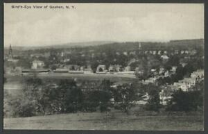Goshen-NY-c-1920s-Postcard-BIRD-039-S-EYE-VIEW-From-Behind-Historic-Track